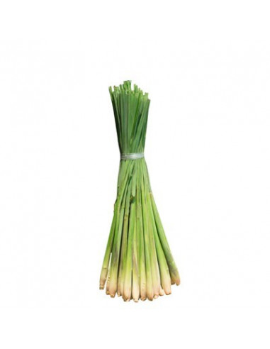 Lemongrass BIO 15g biological dried for aromatherapy